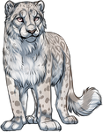 Albino Snow Leopard by TokoTime