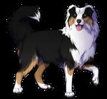 Black Tri Australian Shepherd Companion by TokoTime