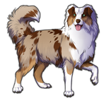Red Merle Australian Shepherd Companion by TokoTime