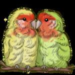 Lovebird by TokoTime