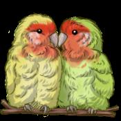 Lovebirds by TokoTime