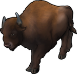 Bison by TokoTime