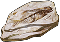 Fossil - Fish by TokoTime