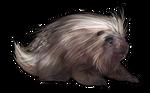 Porcupine Companion by TokoTime