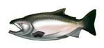 King  Chinook  Salmon by TokoTime