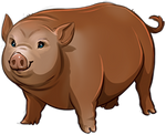 Brown Pig Companion by TokoTime