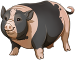 Piebald Pig Companion by TokoTime
