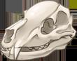Bear Skull by TokoTime