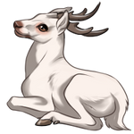 Albino Deer by TokoTime