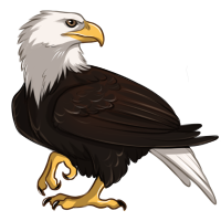 Eagle by TokoTime