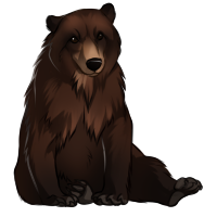 Bear by TokoTime