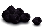 Blackberries by TokoTime