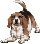 Beagle Companion by TokoTime