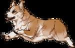 Corgi Companion by TokoTime