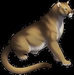 Mountain Lion Companion by TokoTime