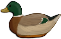 Decoy Duck by TokoTime