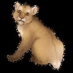 Smilodon Cub Companion - Standard by TokoTime