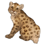 Smilodon Cub Companion - Spotted by TokoTime