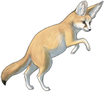 Fennec Fox by TokoTime
