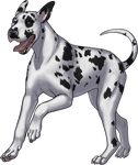 Great Dane - Harlequin by TokoTime