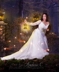 Fairylights v2