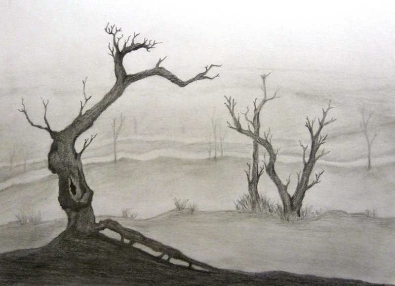Graphite tree landscape by nomore4s on deviantart for What is landscape drawing