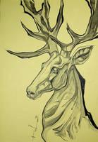 Deer by Red-Rus