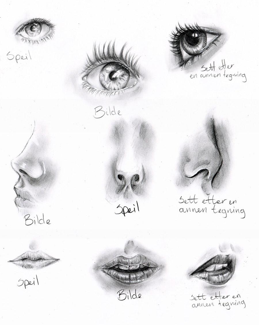 Anatomy practice by nor-renee on DeviantArt