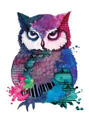 Watercolor Owl by nor-renee