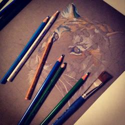 Tiger Wip by nor-renee