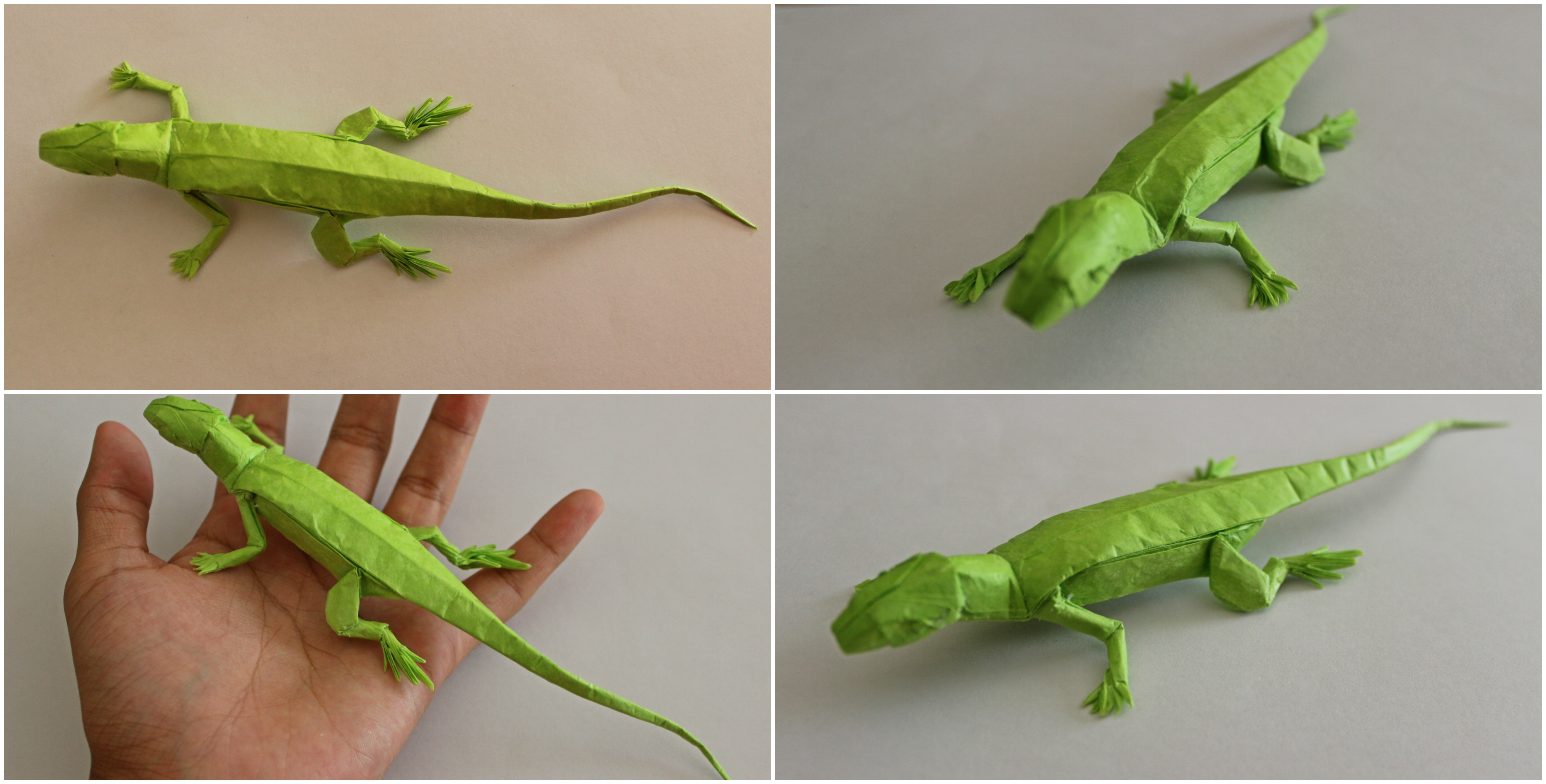Origami Animals: Action Lizard | Origami - Artis Bellus | 2029x4000