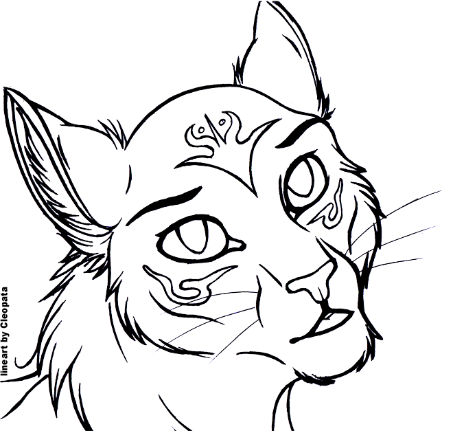 Cat Lineart : Free cat headshot lineart by cleopata on deviantart