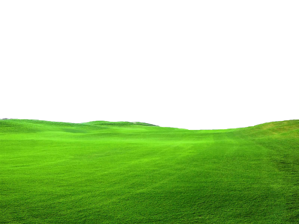 Green Grass PNG FILE - Use freely by TheArtist100 on ...