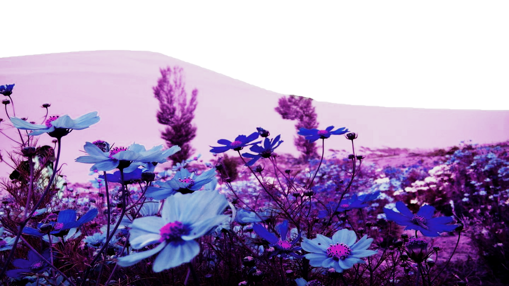 Flower PNG Landscape by TheArtist100 ...