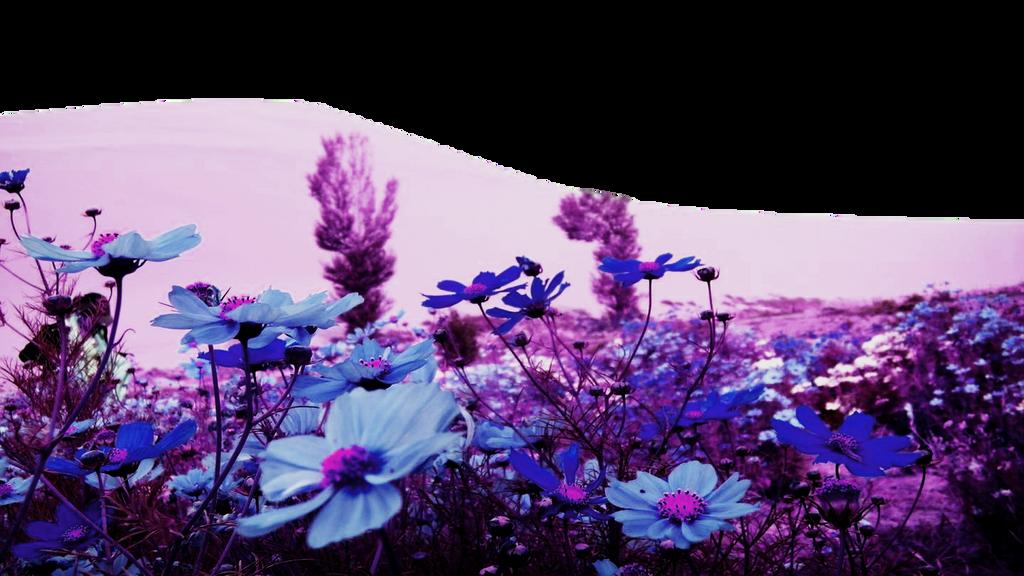 Flower PNG Landscape by TheArtist100 on DeviantArt