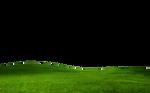GRASS PNG FILE -TRANSPARENT