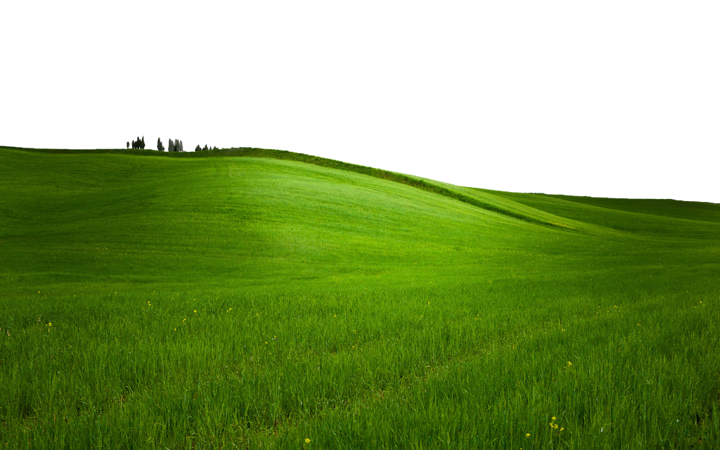 GREEN GRASS PNG - USE ANYWHERE (TRANSPARENT) by ...