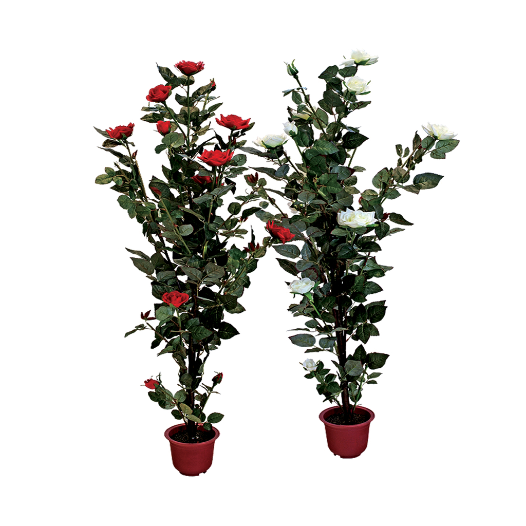 ROSE PLANT WITH POT - PNG TRANSPARENT by TheArtist100 on ...