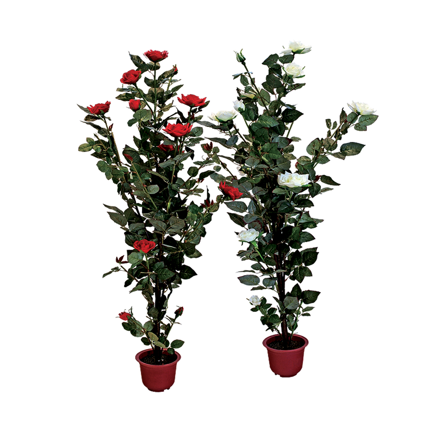 Flower Plant Png Rose Plant With Pot Png