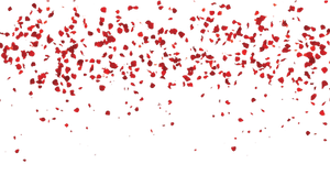 FALLING Rose leaves PNG transparent free