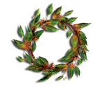 GREEN LEAVES CUTE PNG decorative.. transparent