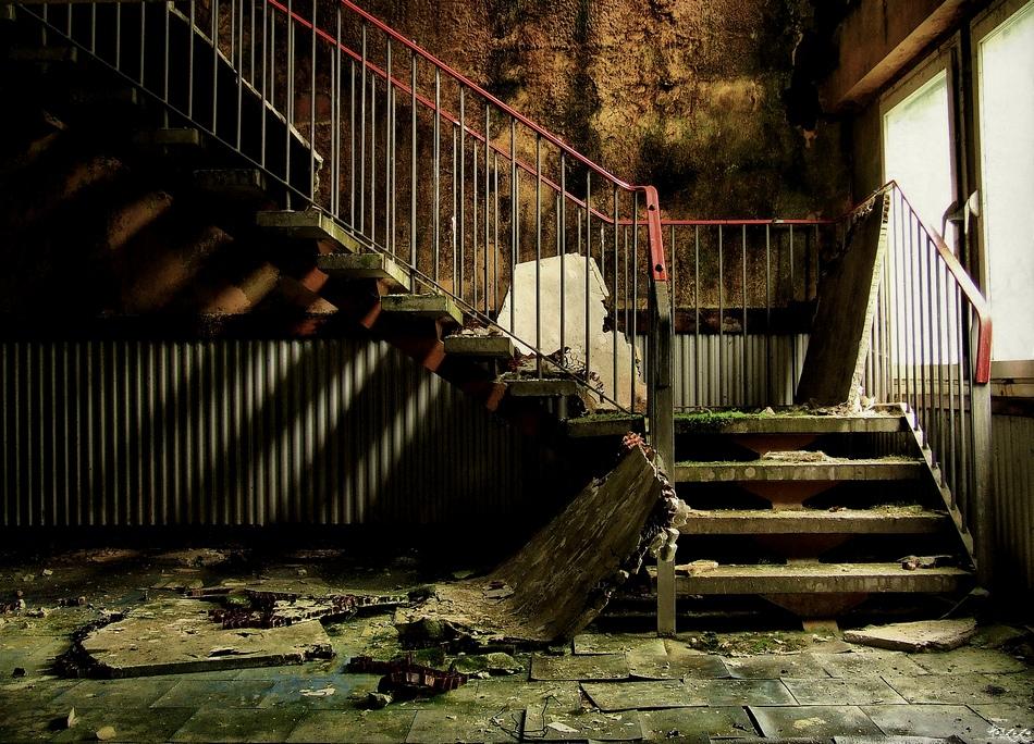 living wall by Haszczu