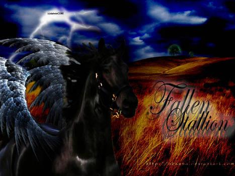 Fallen Stallion