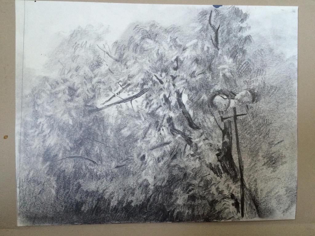 Tree by EarstWindArt
