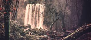 Enjoy In Waterfall