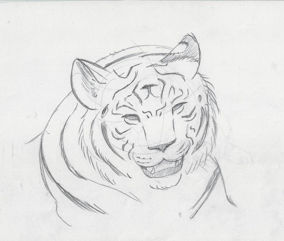 Tiger Line Practice by Marsupialbandit