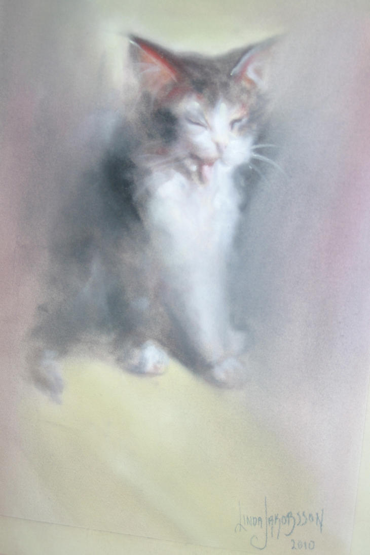Kitty by Lyninda