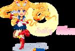 Sailor Moon 2013!