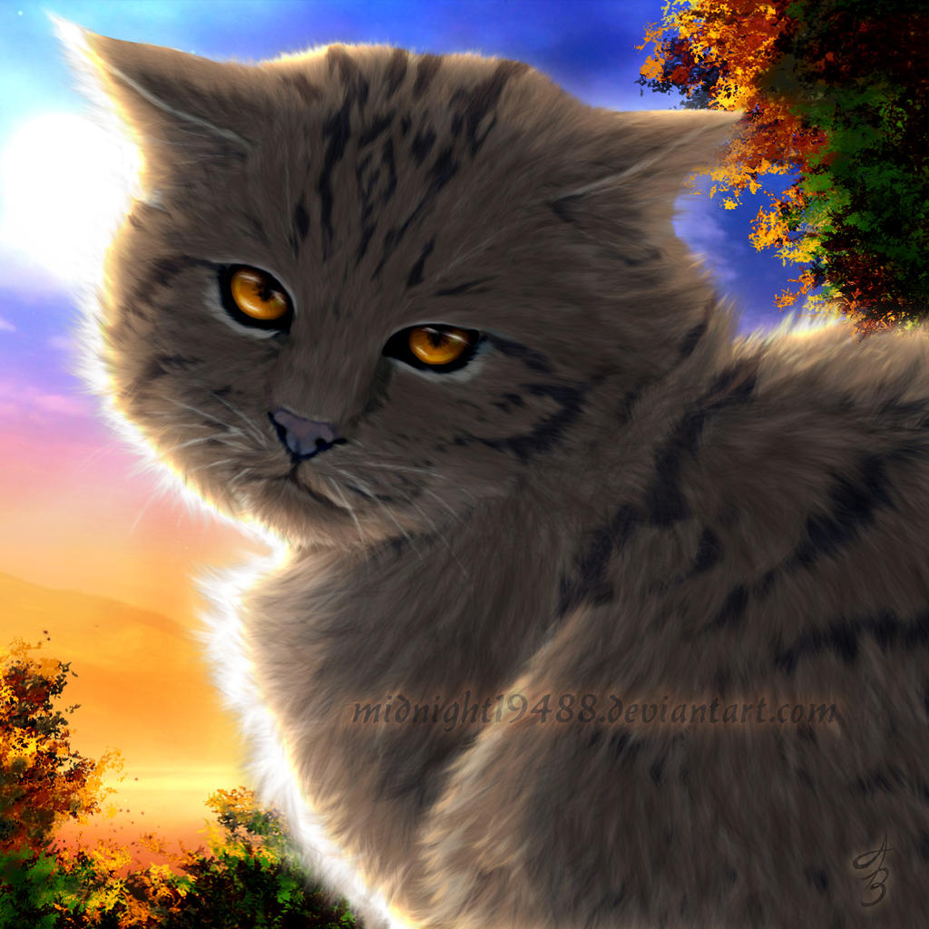 Warrior Cats Game: Warrior Cats: Untold Tales