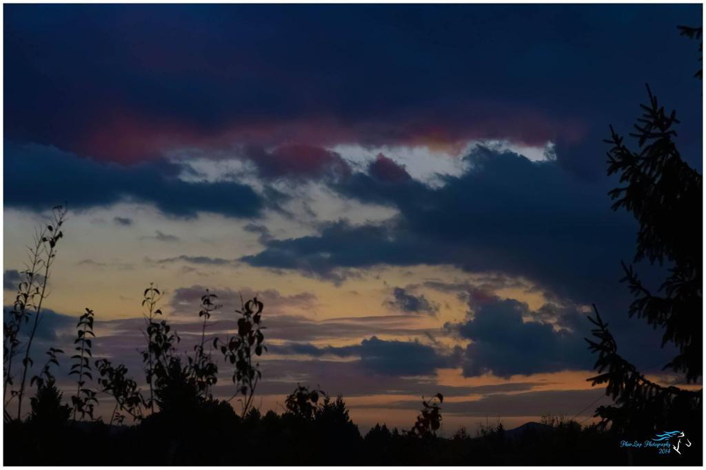 Autumn darkness is coming... by Desirestar